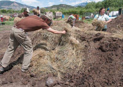 biodynamic-composting-191