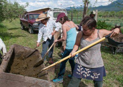 biodynamic-composting-246