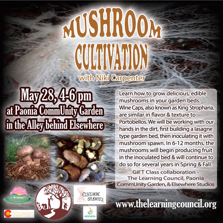 Mushroom Cultivation poster