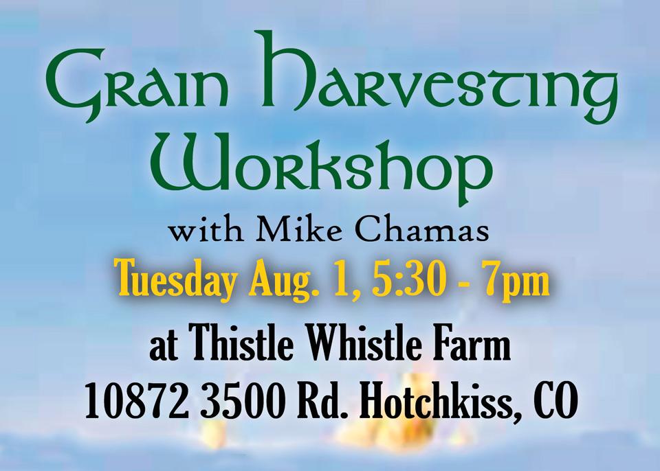 Grain Harvesting featured image