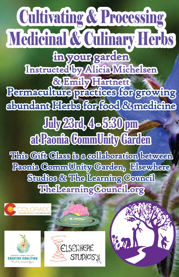 Cultivating and Processing Medicinal and Culinary Herbs image