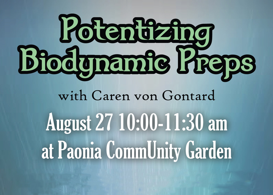 Potentizing Biodynamic Preps featured image