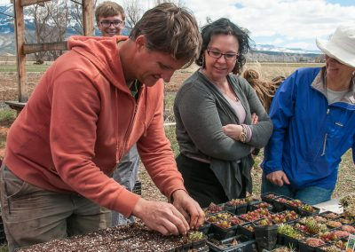 Image of Don Lareau planting perennials at Zephyros Farm