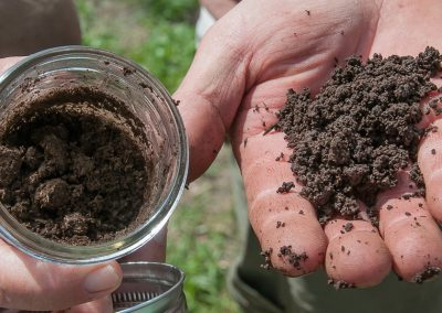 biodynamic-composting-229