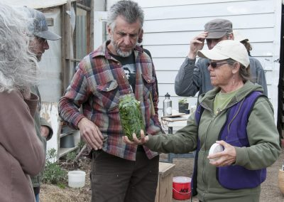 Image of Regenerative Agriculture class - nettle prep