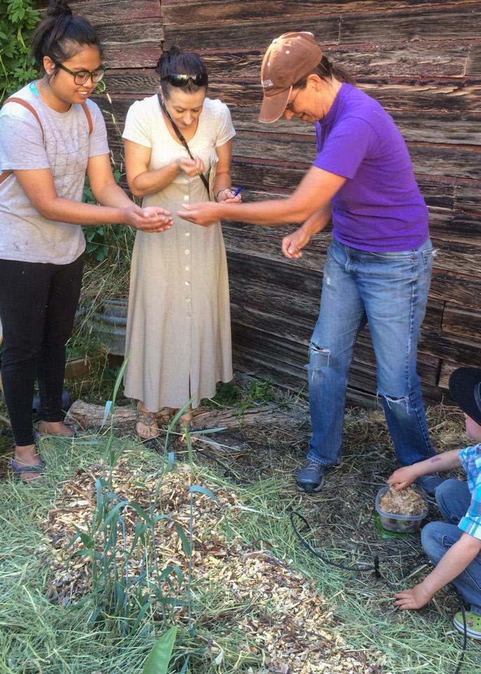 Mushroom Cultivation Class image