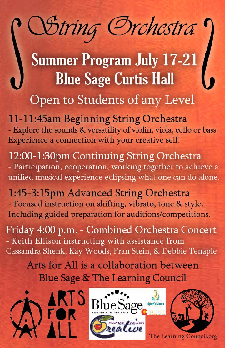 String Orchestra poster