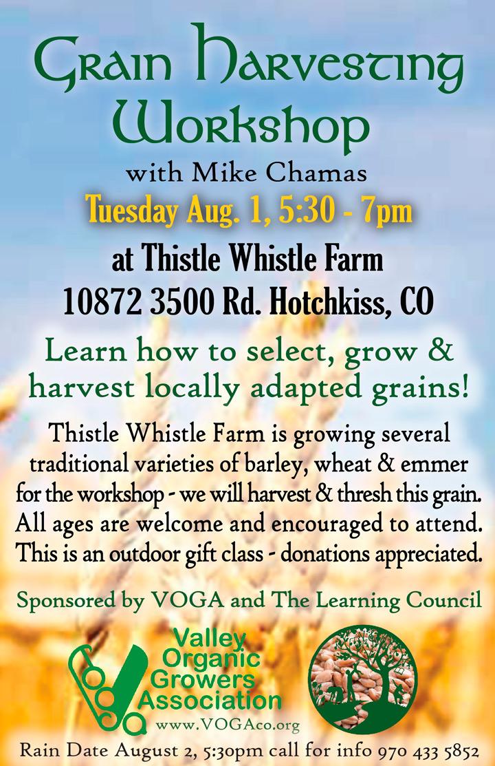 Grain Harvesting poster