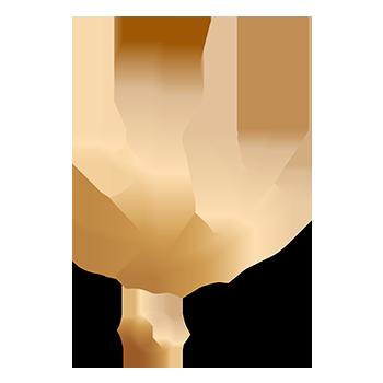 Bosq logo