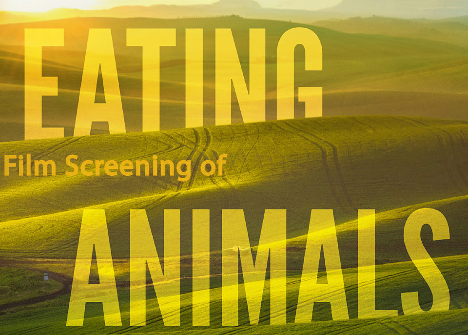 Eating Animals featured image