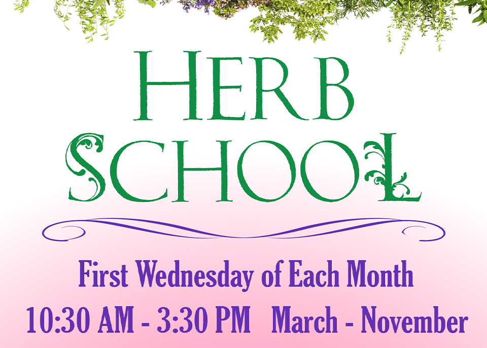 Herb School featured image