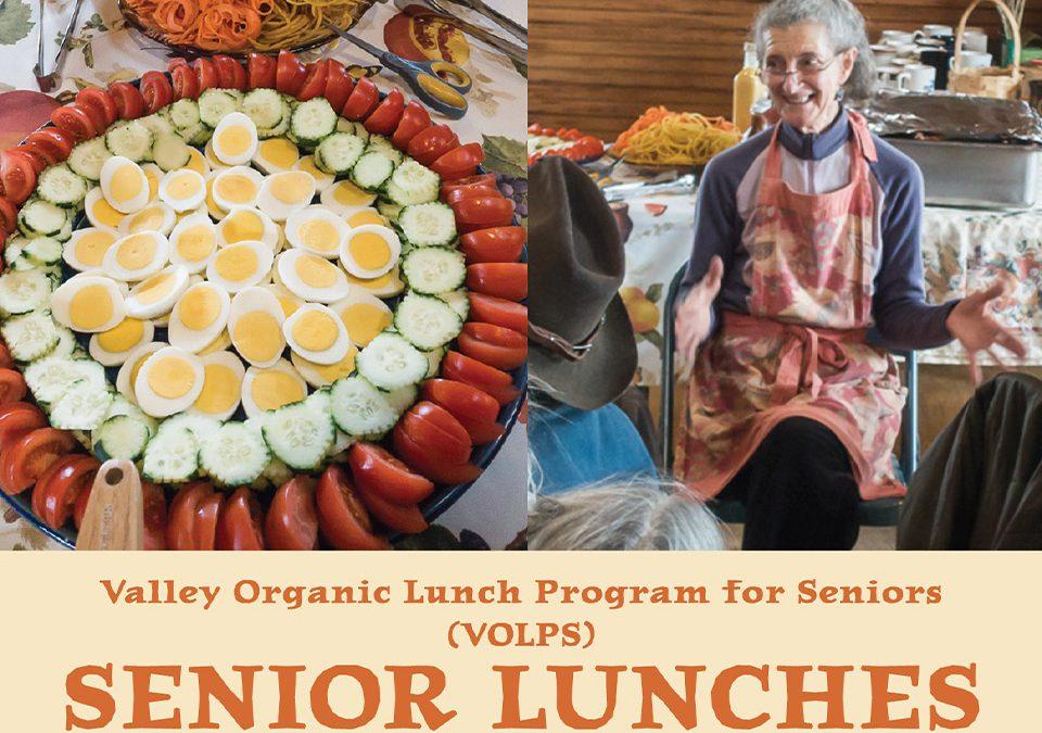 Senior Lunches