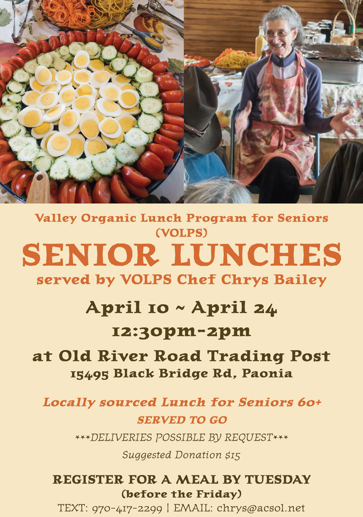 Senior Lunches poster