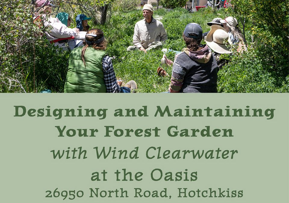 Designing and Maintaining Your Forest Garden