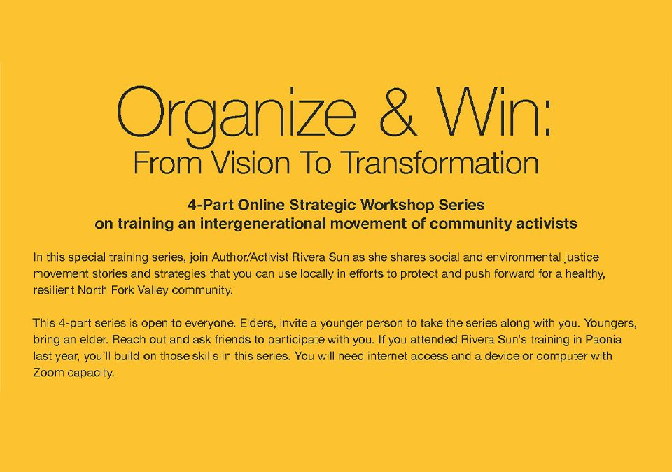 Organize & Win: From Vision To Transformation