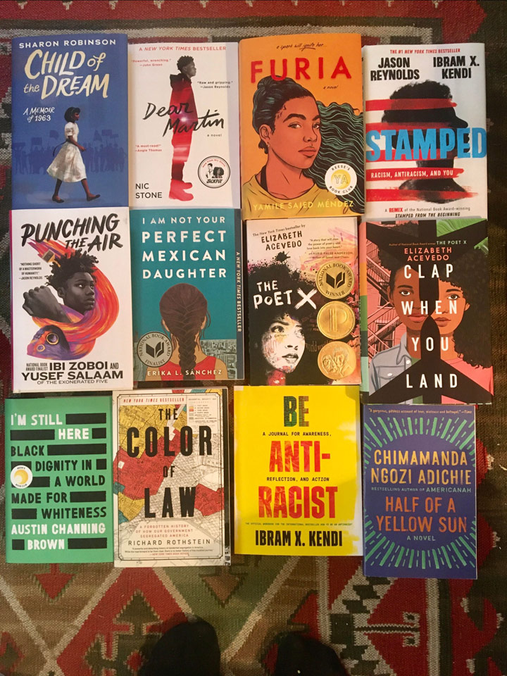 Image of Diversity Library books
