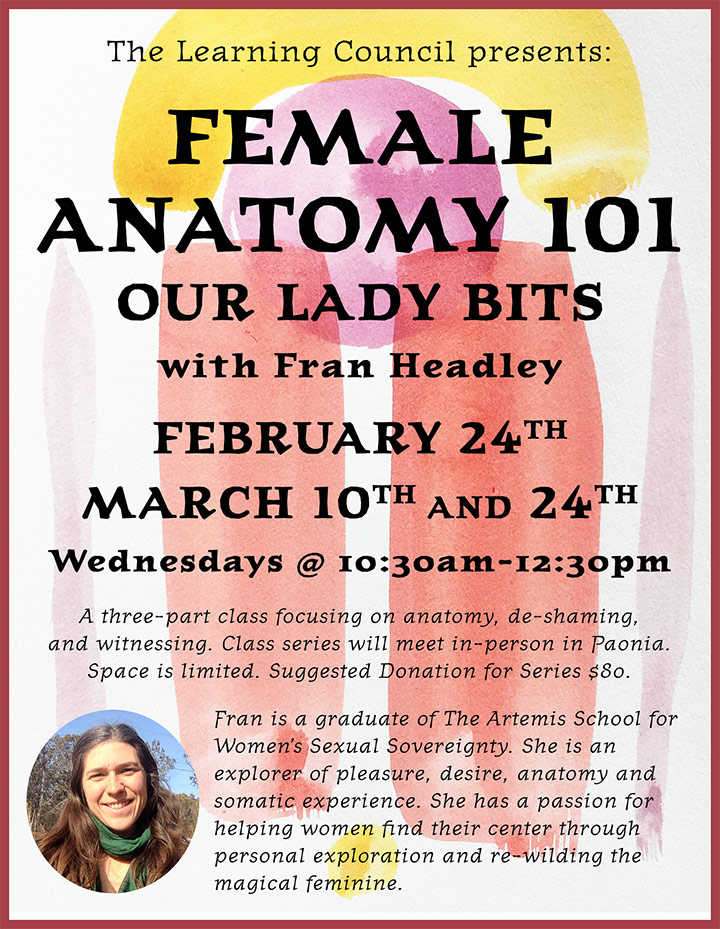 Female Anatomy poster