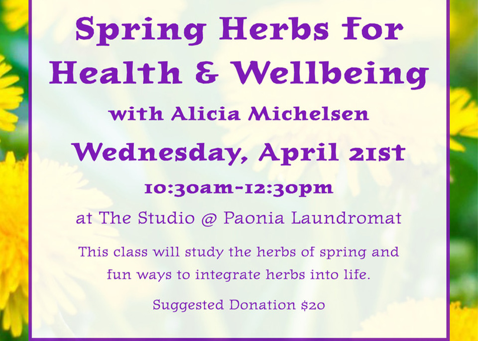 Spring Herbs for Health and Wellbeing