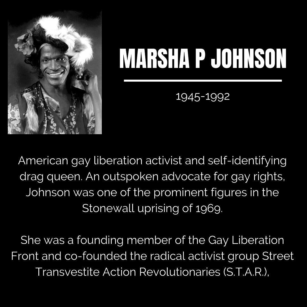 Black Trailblazers - Activists - Johnson