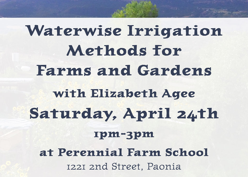 Waterwise Irrigation Methods
