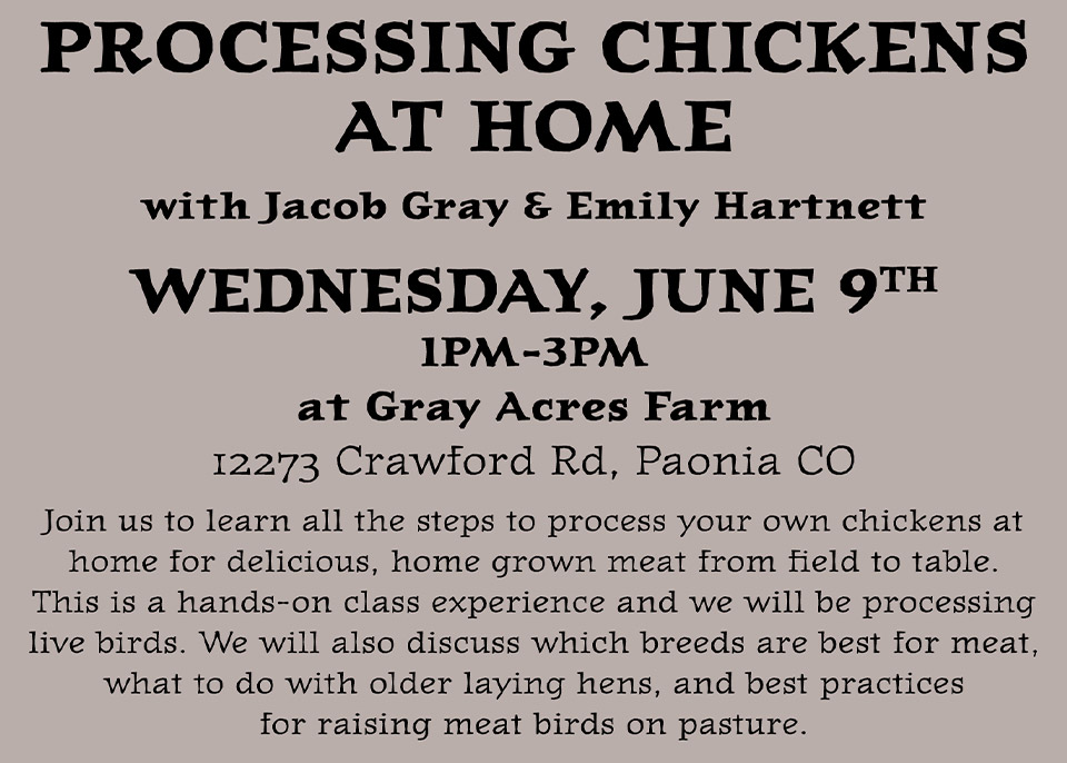 Processing Chickens at Home