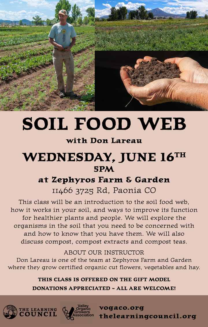Soil Food Web poster