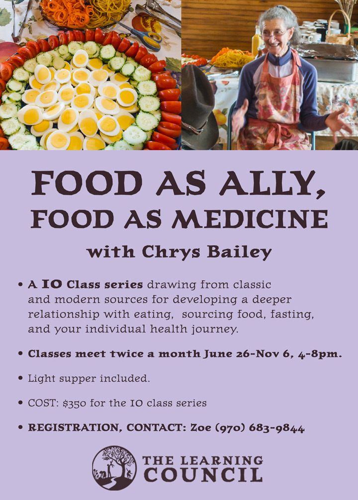 Food as Ally poster