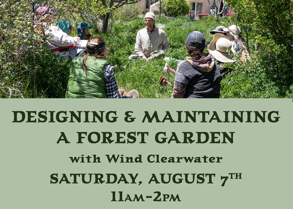 Designing and Maintaining a Forest Garden